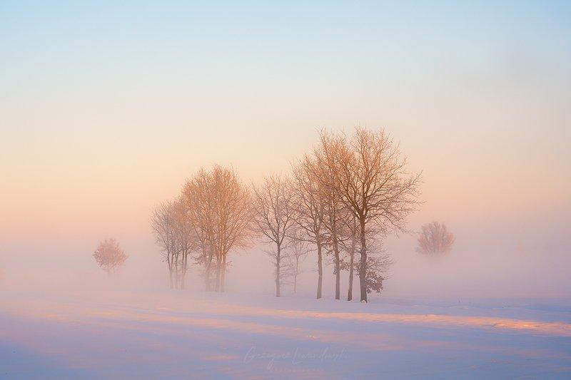 winter Winterphoto preview