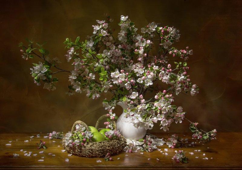 натюрморт, весна, яблоня, яблоня цветет Нежность весны.... фото превью