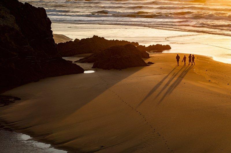 пляж, песок, океан пляжные тениphoto preview