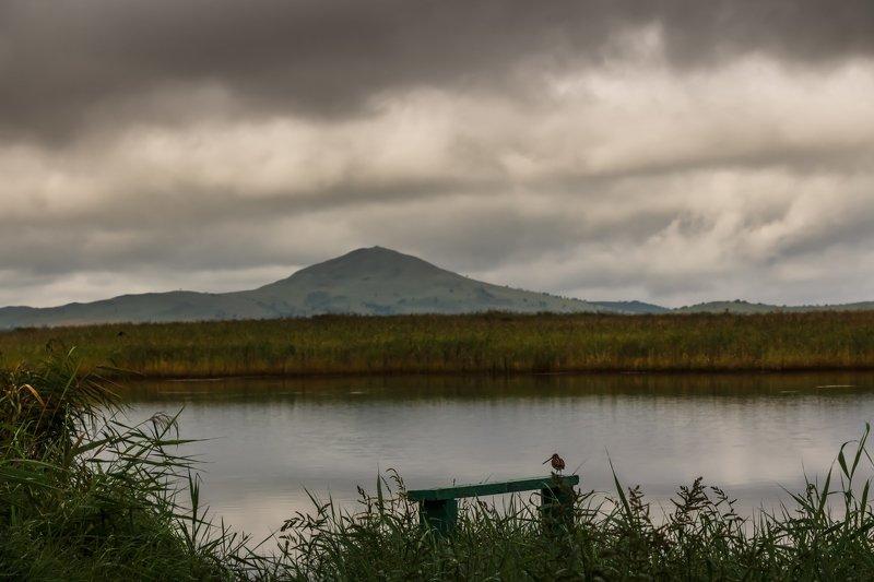 Приморский край, пейзаж, природа Размышления..photo preview