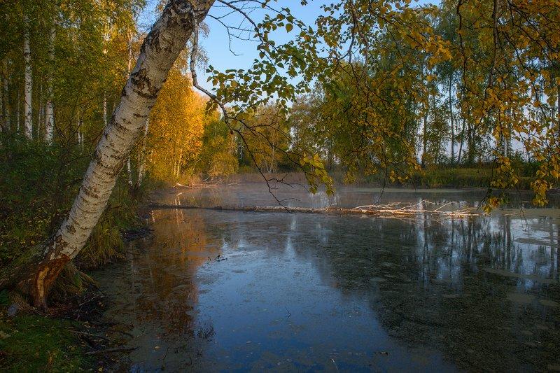 Курганская зауралье Шадринск ...photo preview