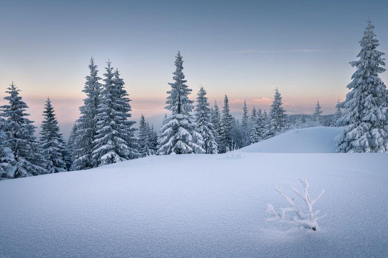 landscape, nature, photo, nikon, beskid Beskid Żywieckiphoto preview