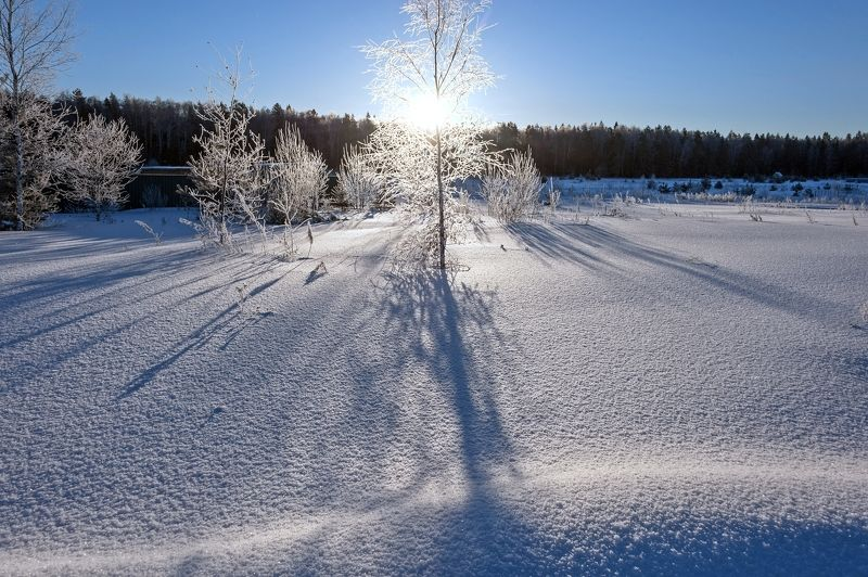 Мороз и солнце....