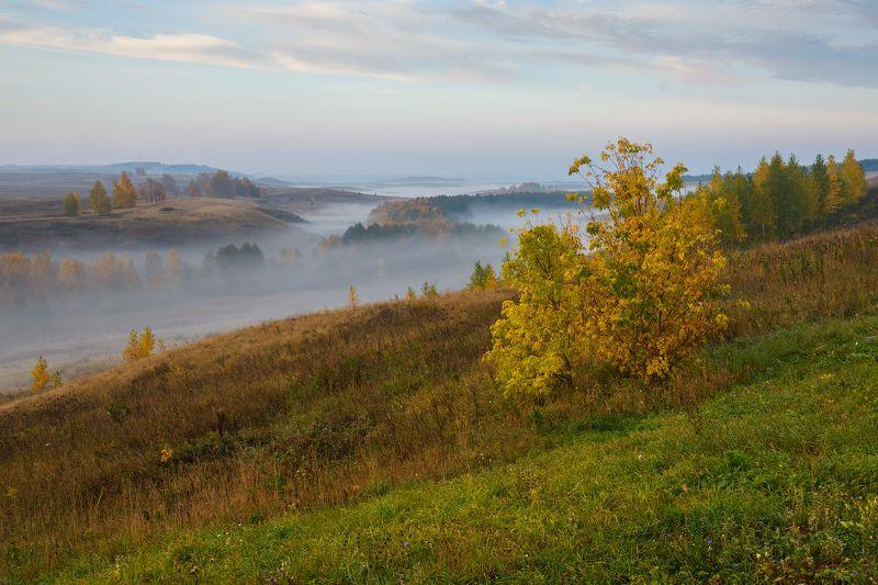 Башкирия осень ...photo preview