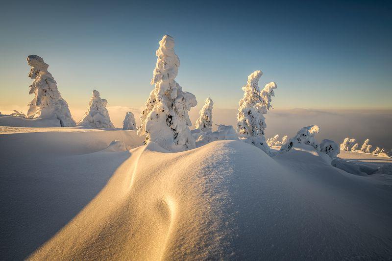 nature, landscape, colors, sunset, beskidy, snow, winter Pilskophoto preview