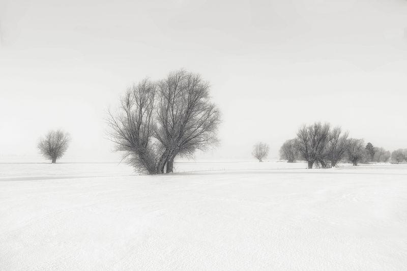 landscaope Winter landscapephoto preview
