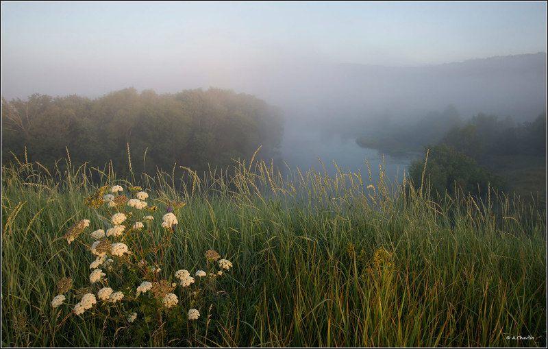 утро,думан,река,первые,лучи,загорается,новый,день Загорается новый деньphoto preview