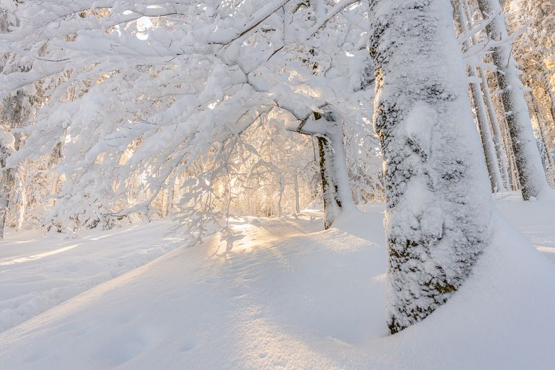 nature, landscape, colors, beskidy, snow, winter, morning Beskid Żywieckiphoto preview