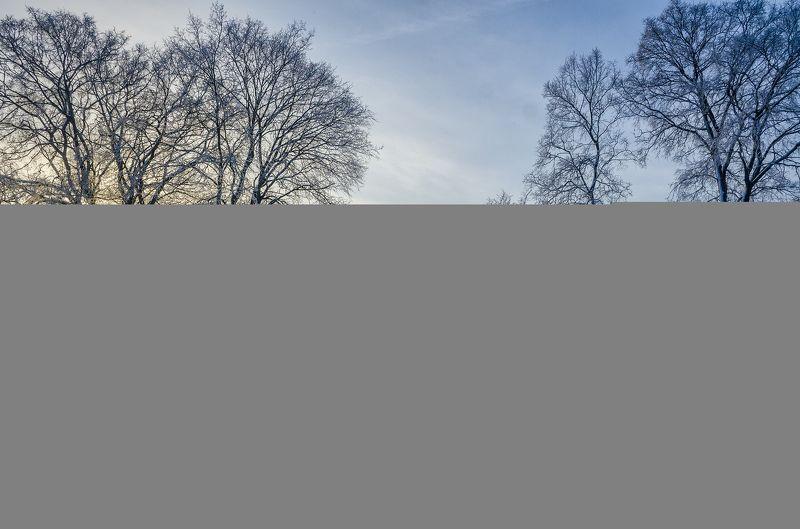 nevant60, пейзаж, красота, природа Морозное утроphoto preview