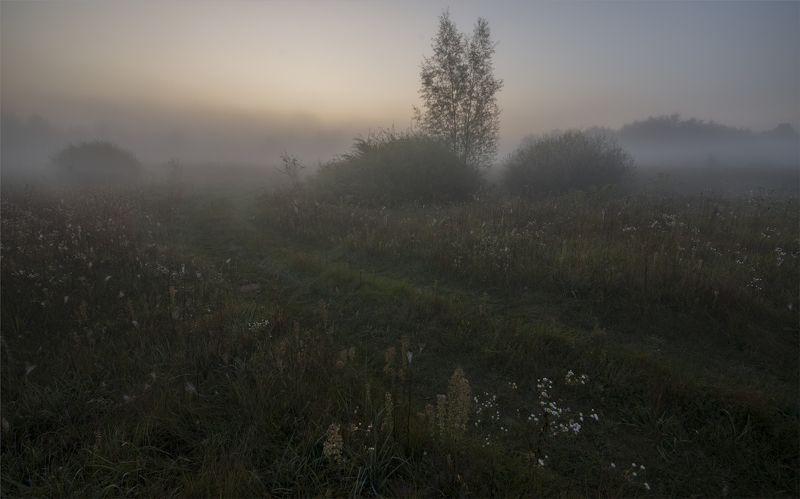 р.горинь pre-dawn...photo preview