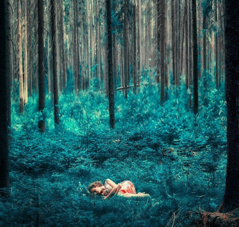 Sleeping in magic forestphoto preview