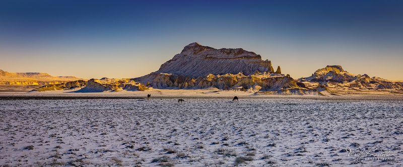 казахстан, полуостров мангышлак, долина акмыштау, февраль 2014 странная троицаphoto preview
