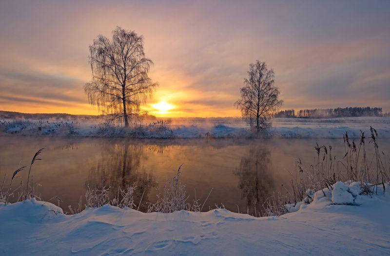 мороз, утро, свислочь, зима Январь рассветныйphoto preview