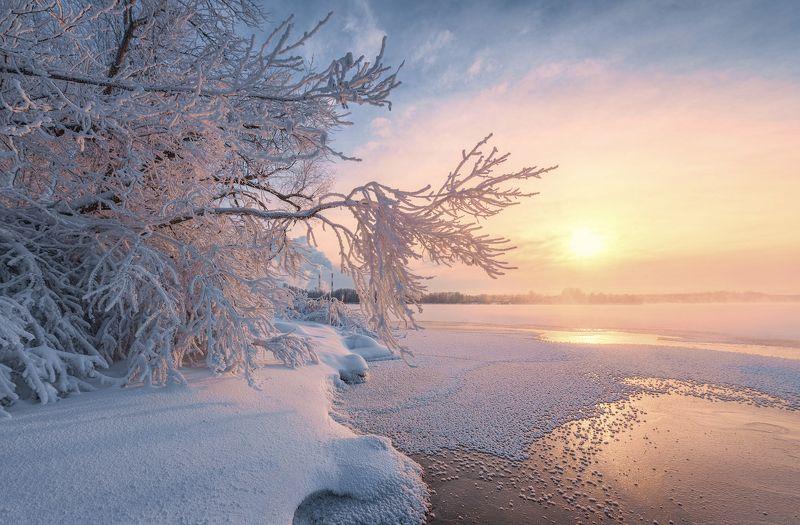 зима, рассвет, озеро, шатура, пейзаж Зима на Святом озереphoto preview