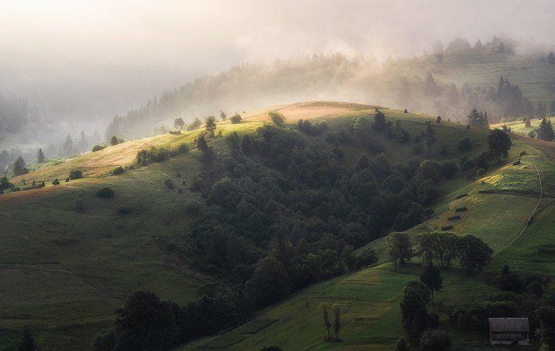Горы, Карпаты, Ч. Тиса Утро в горахphoto preview