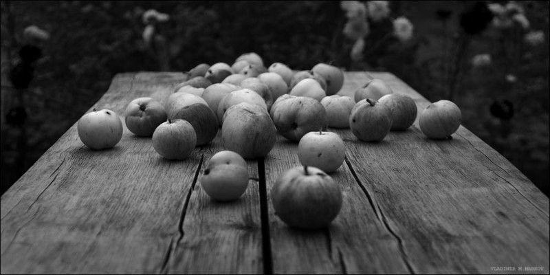 Яблочный спасphoto preview