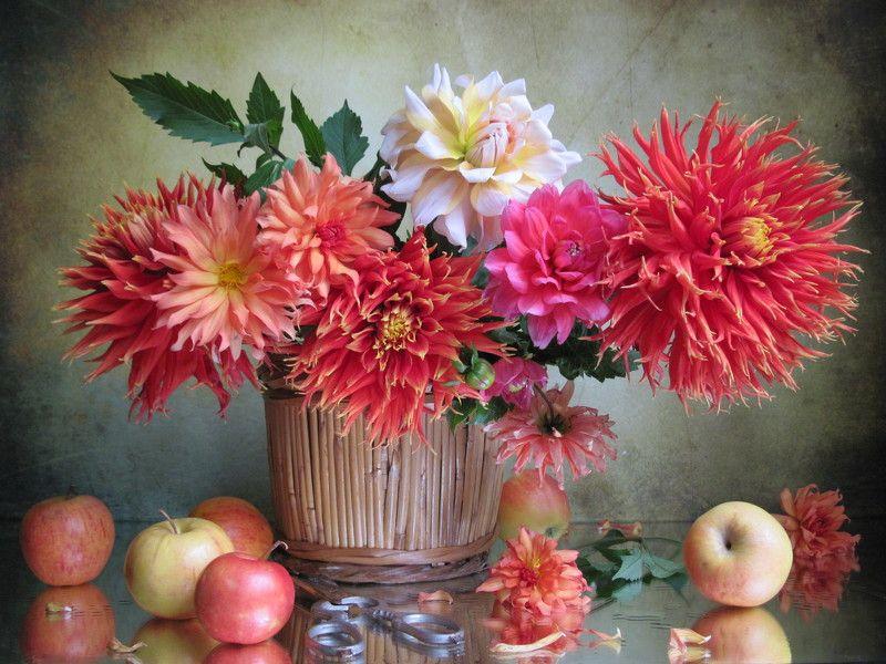 цветы, букет, георгины, яблоки Дачные трофеиphoto preview