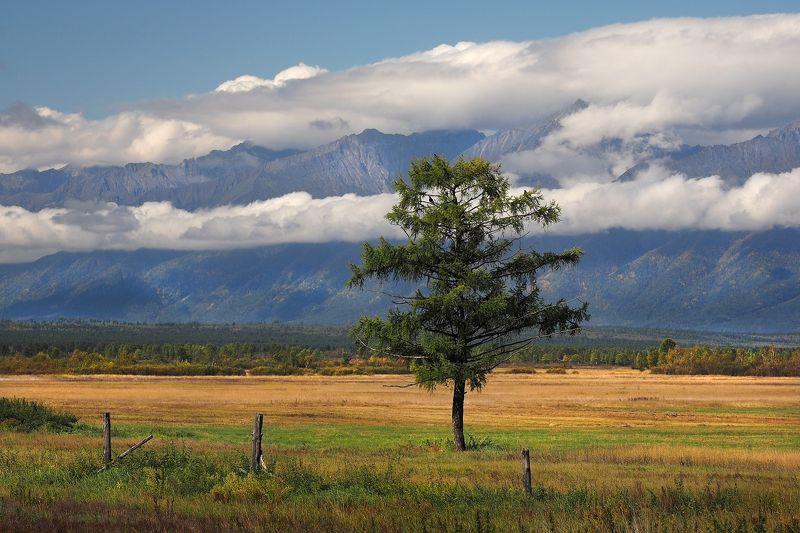 На фоне гор и облаковphoto preview