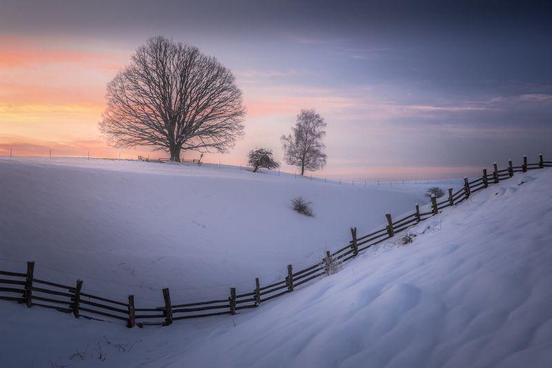 Sunrise, landscape, winter, snow, sun, light, nature, czech republic, bohemian Switzerland Bohemian Switzerland photo preview