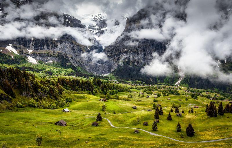 горы, альпы, долина полянкаphoto preview