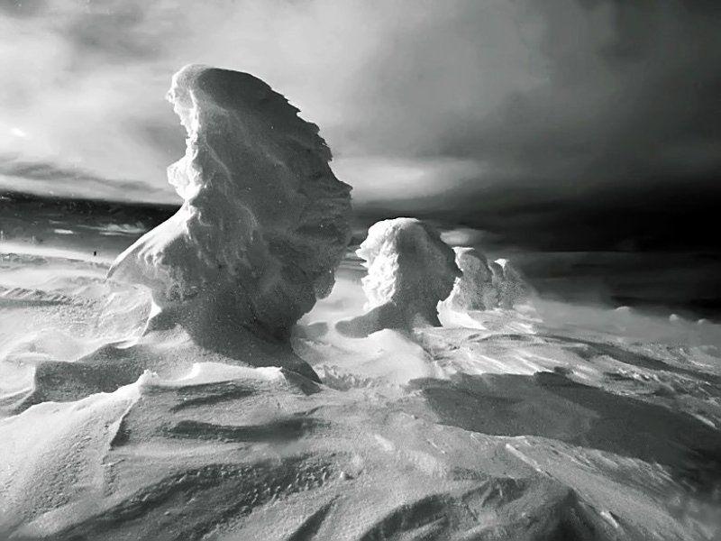 Winter Portraitsphoto preview