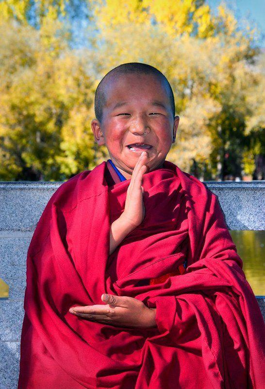 топиари смешные буддийские картинки молочные зубы должны