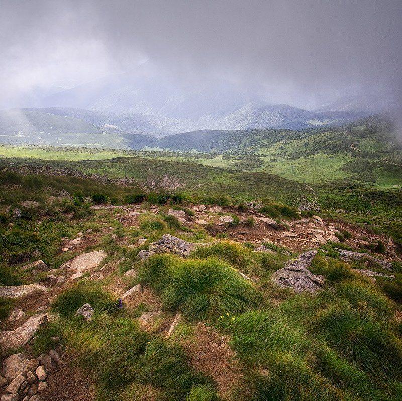 Говерла, Горы, Карпаты Вид с Говерлыphoto preview