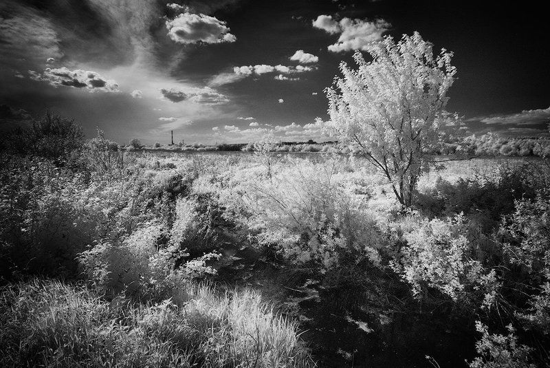Ижевск, Инфракрасная съемка Итоги мелиорацииphoto preview