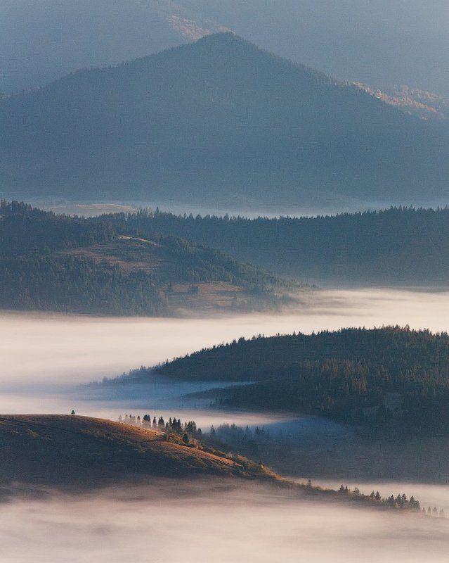 Карпаты, Пейзаж, Туман, Украина, Утро photo preview
