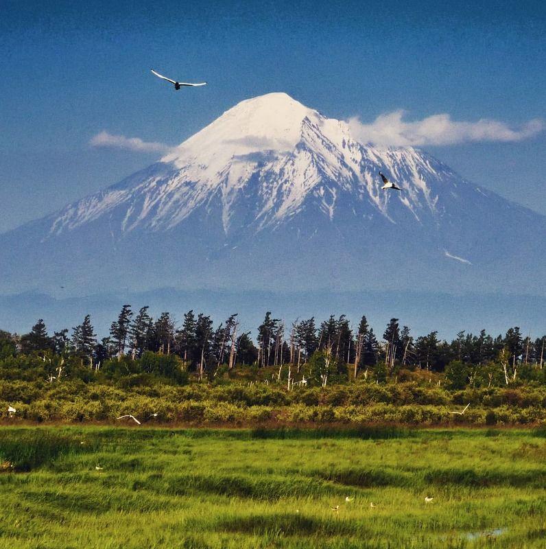 вулкан, толбачик, камчатка, пейзаж Вулкан Острый Толбачикphoto preview