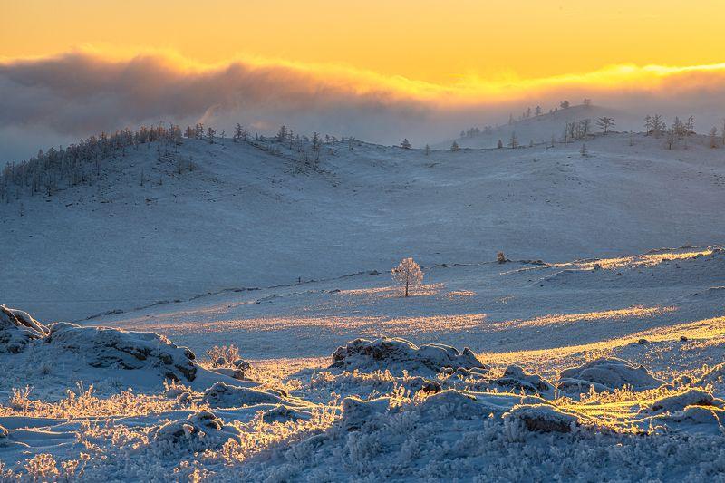 зима,снег,рассвет, туман, тажеранская степь Утро в Тажеранской степиphoto preview