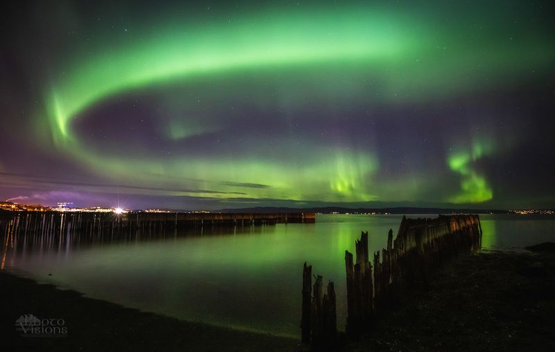 norway,aurora,northern lights,night,beach,shoreline,fjord,sea, Aurora dancephoto preview