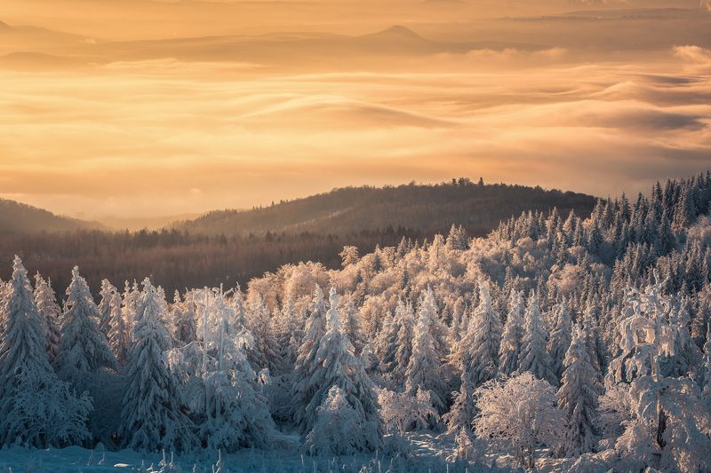 Sunrise, landscape, winter, snow, sun, light, nature, czech republic, fog, mist White and Goldphoto preview
