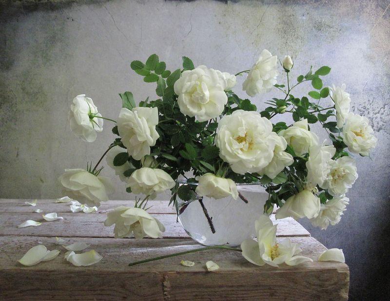 цветы, букет, розы, белый цвет Ароматы весныphoto preview