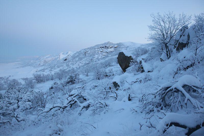 зима,вечер,горы,вершины,пейзаж,небо,деревья,дагестан,природа Зимний пейзаж..photo preview