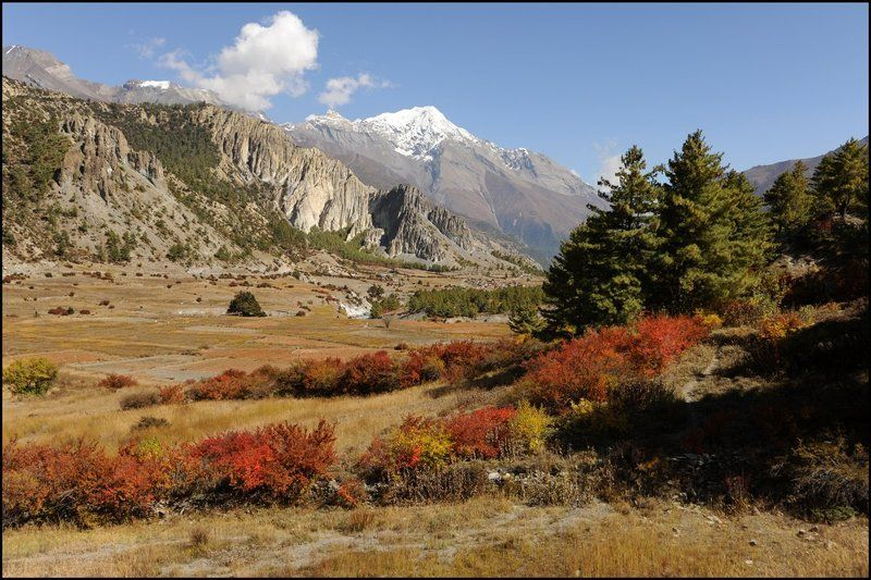 Осенние Гималаиphoto preview