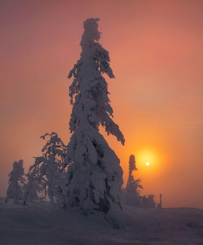 урал, зима, рассвет, мороз, утро, свет Встретить рассвет...photo preview