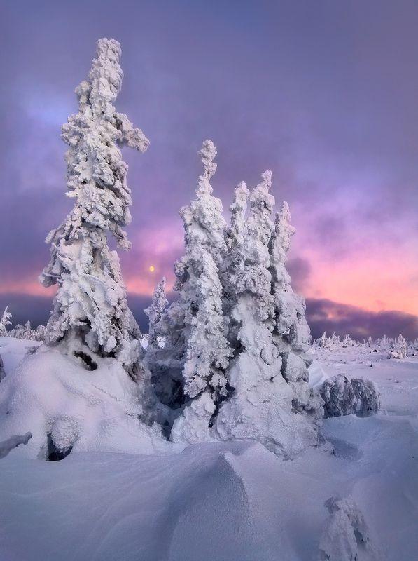 урал, зима, гух, рассвет В рассвет на Рождество...photo preview