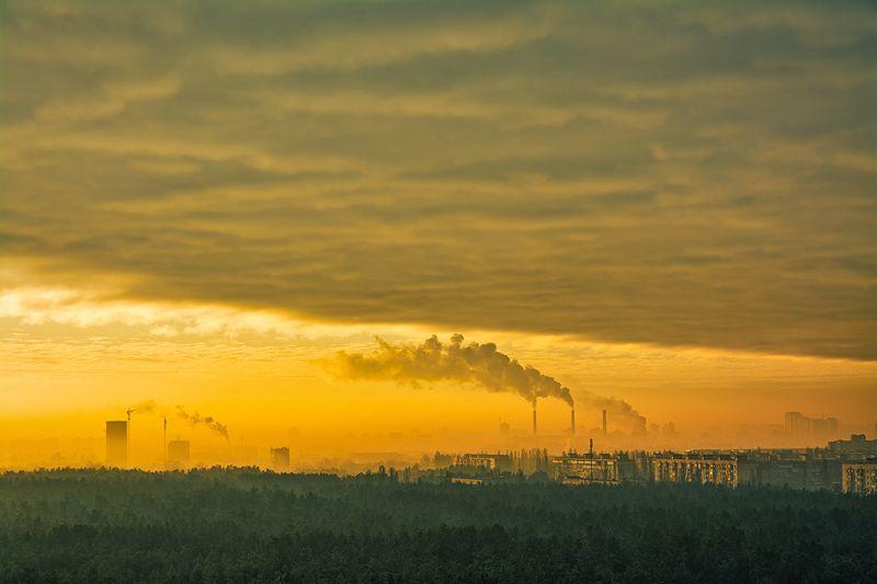 landscape, пейзаж, утро, лес,  деревья, солнечный свет,  солнце, природа, город, восход утроphoto preview
