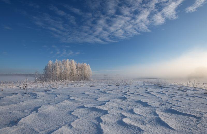 зима, мороз, утро, свислочь, туман, иней, пейзаж Симметрияphoto preview