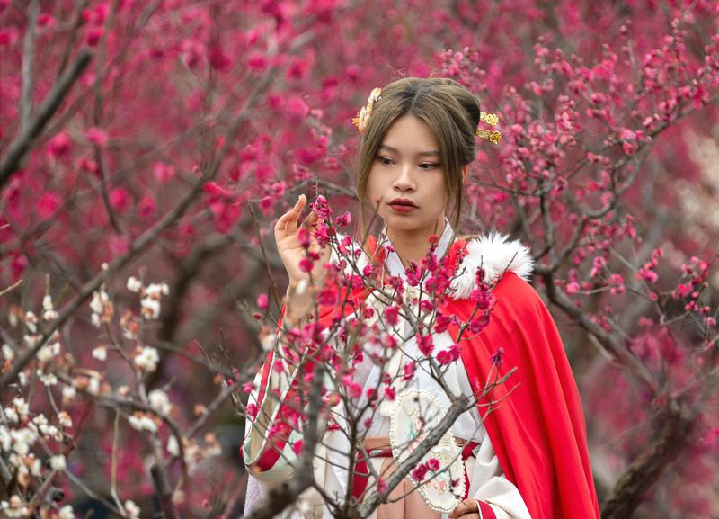 Chinese princese in plum blossomphoto preview