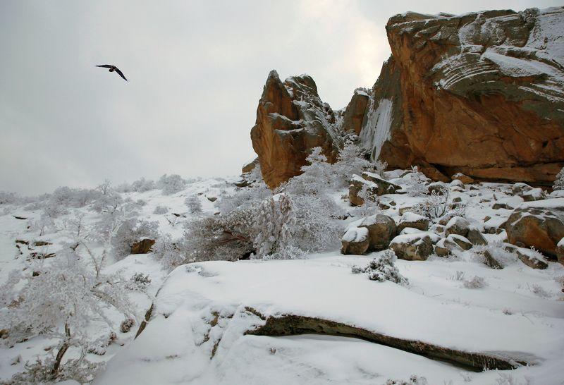 зима,горы,вечер,снег,пейзаж,природа,дагестан.. Горный пейзаphoto preview