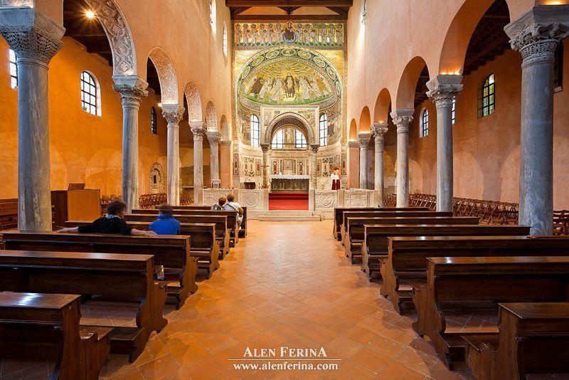 Евфразиева базиликаphoto preview