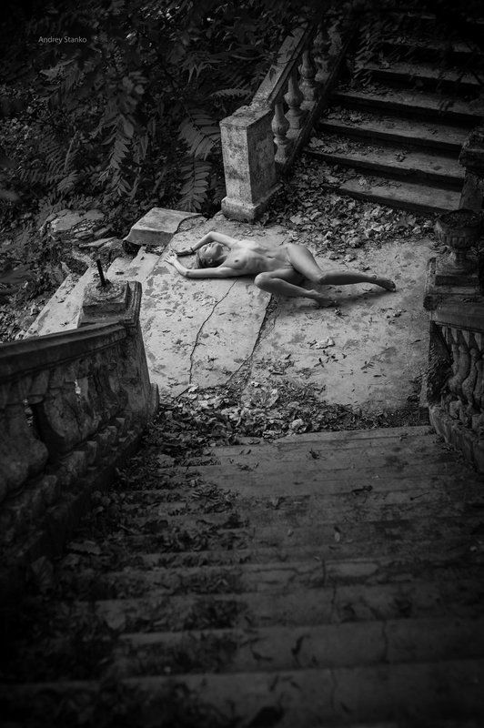 Старая лестницаphoto preview