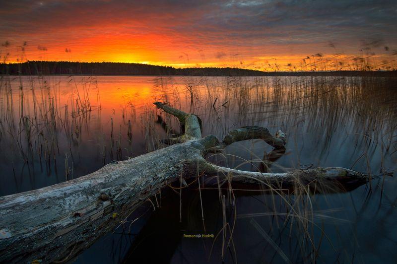 Kociewie, Poland, landscape, sunrise, lake, forest, water, tree, In Kociewie. photo preview