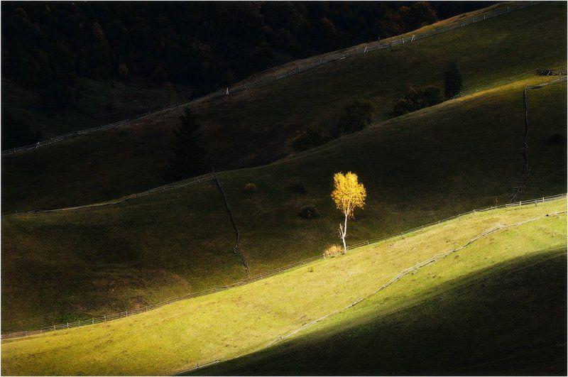 Осенняя рапсодия...photo preview