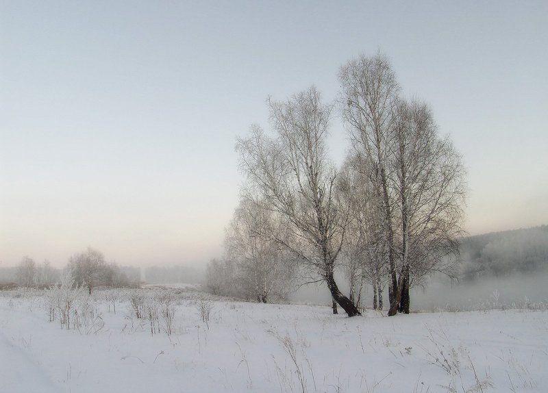 Зима, Туман Зимний туманphoto preview