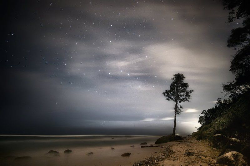 на берегу Балтийского моряphoto preview