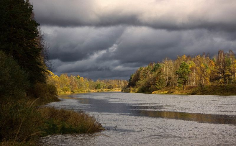 река западная двина, природа тверской области, золотая осень, октябрь Западная Двина в среднем теченииphoto preview