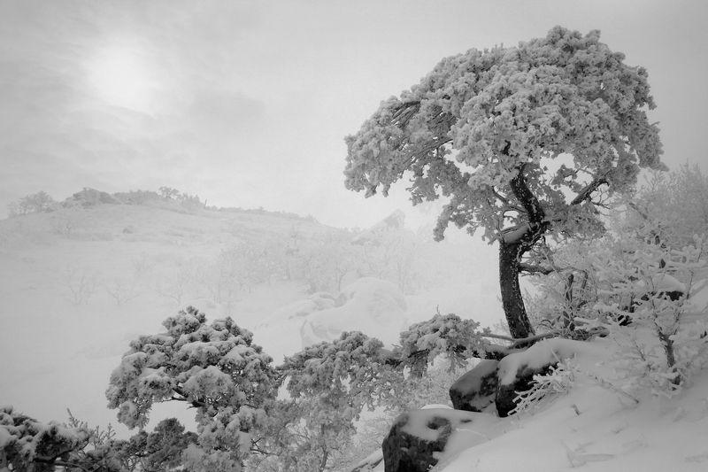 зима,горы,вечер,снег,пейзаж,природа,дагестан.. Зимний пейзаж..photo preview